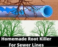 Homemade Root Killer For Sewer Lines
