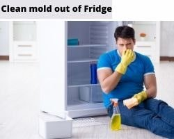 How To Clean Mold Out Of Fridge