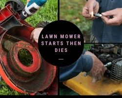 Lawn Mower Starts Then Dies