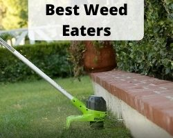 best weed eaters consumer reports